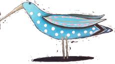zoe-bird--cut2-230