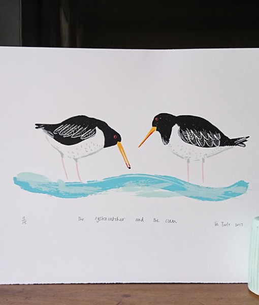 The-Oystercatcher-and-the-Clam